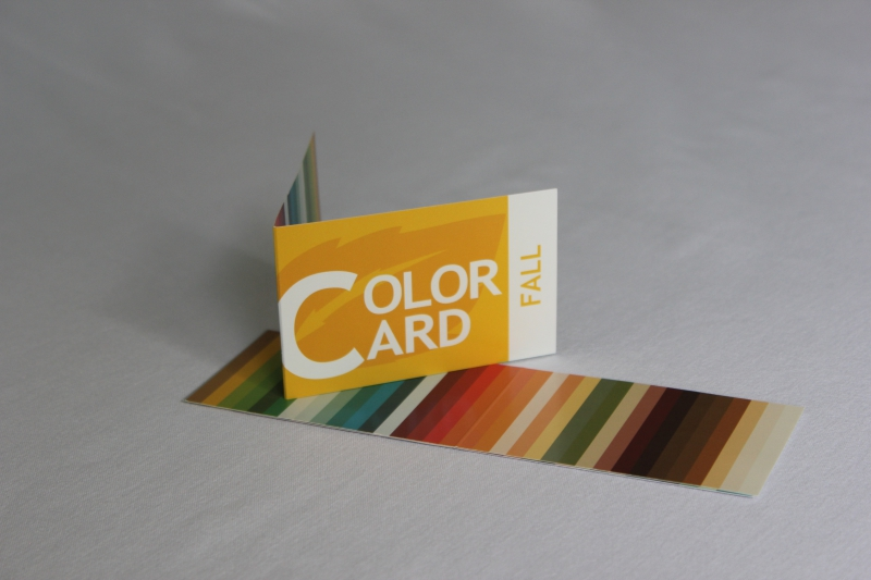 Colorcard herfst